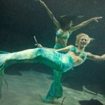weeki-wachee-mermaids-11255B2255D