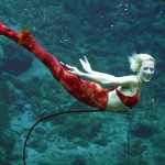 weeki-wachee-mermaids-15255B3255D
