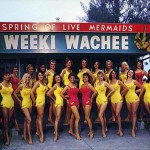 weeki-wachee-mermaids-5255B2255D