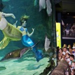 weeki-wachee-mermaids-7255B2255D