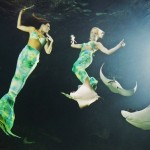 weeki-wachee-mermaids-8255B2255D
